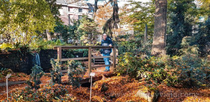 Jardín botánico - Lovaina