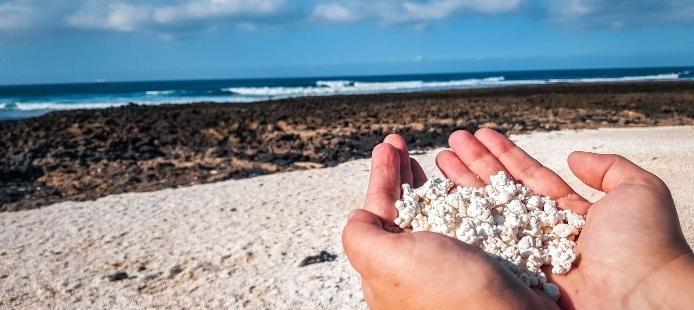 25 +1 cosas qué ver y hacer en Fuerteventura